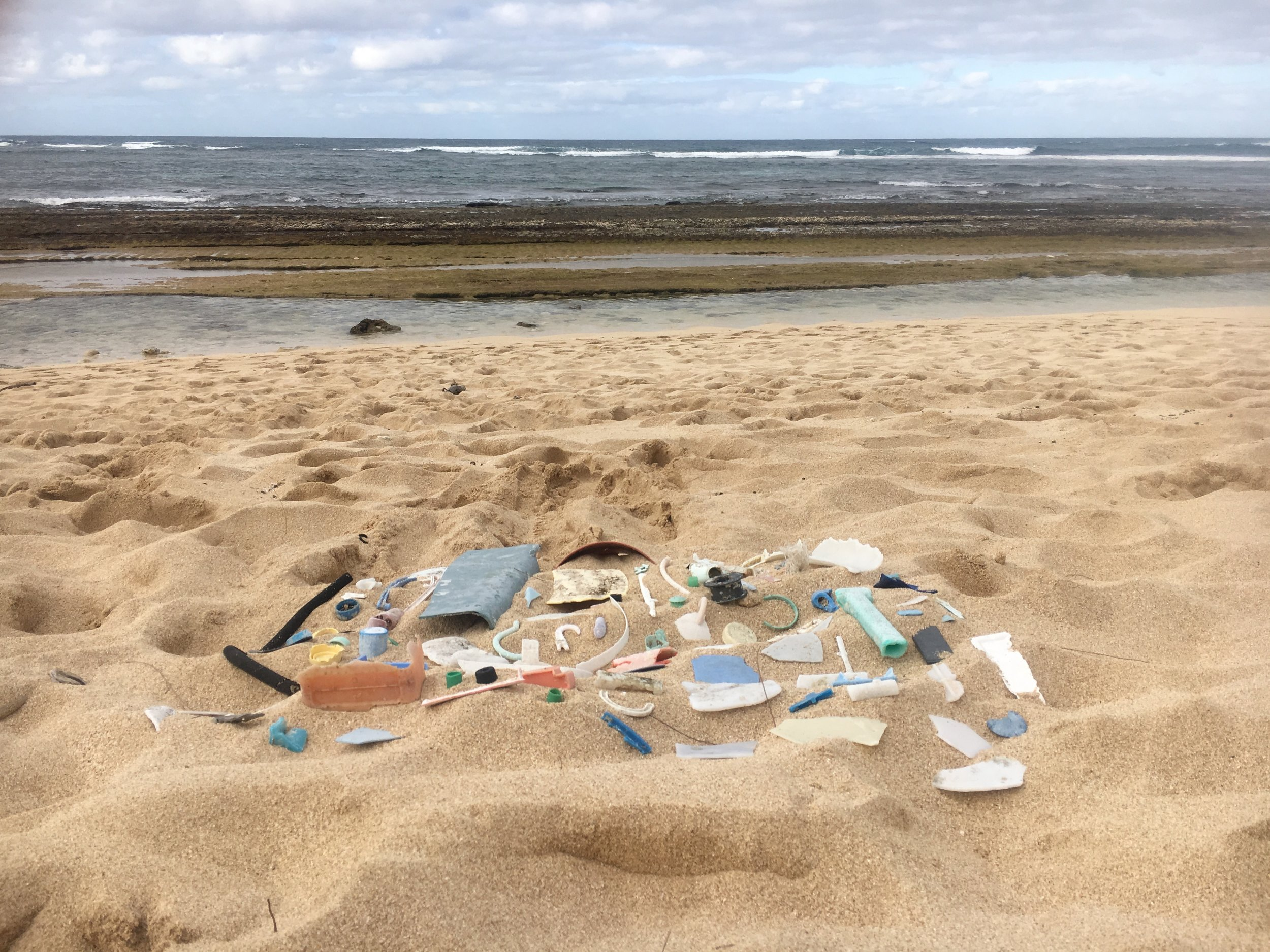Beach Collections: Study II,  2018