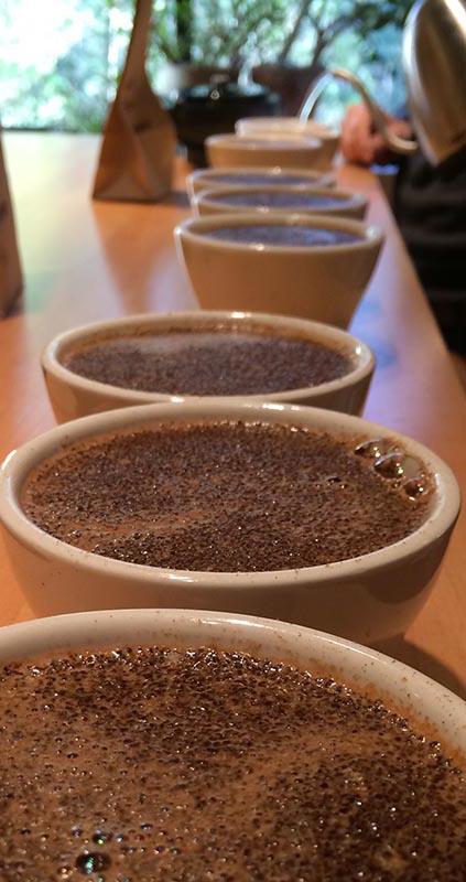 PHOTO COURTESY BARRINGTON COFFEE ROASTING COMPANY