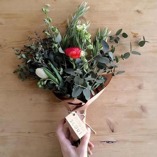 flower_scout.jpg