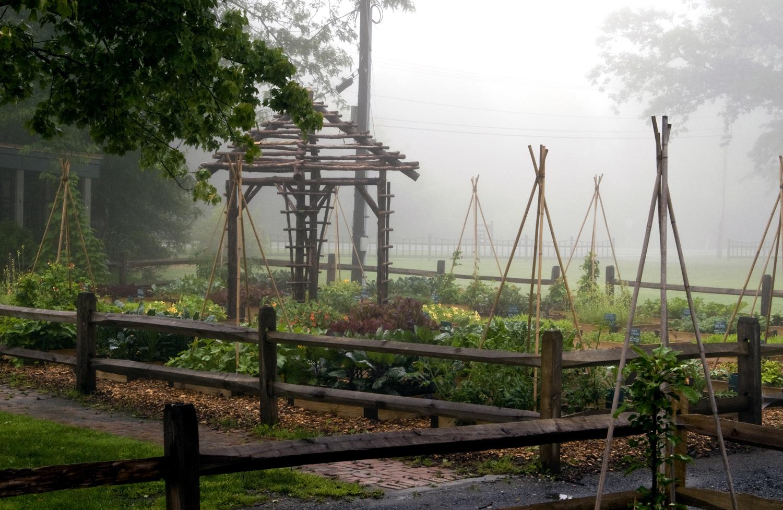 Jack Staub Garden2.jpg