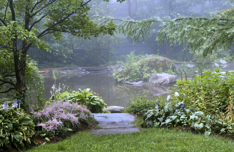 Pond Garden 2 copy2.jpg