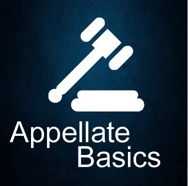 Divorce & Custody Appeals Overview