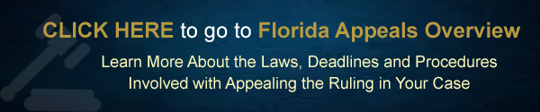 Florida Appeals Overview