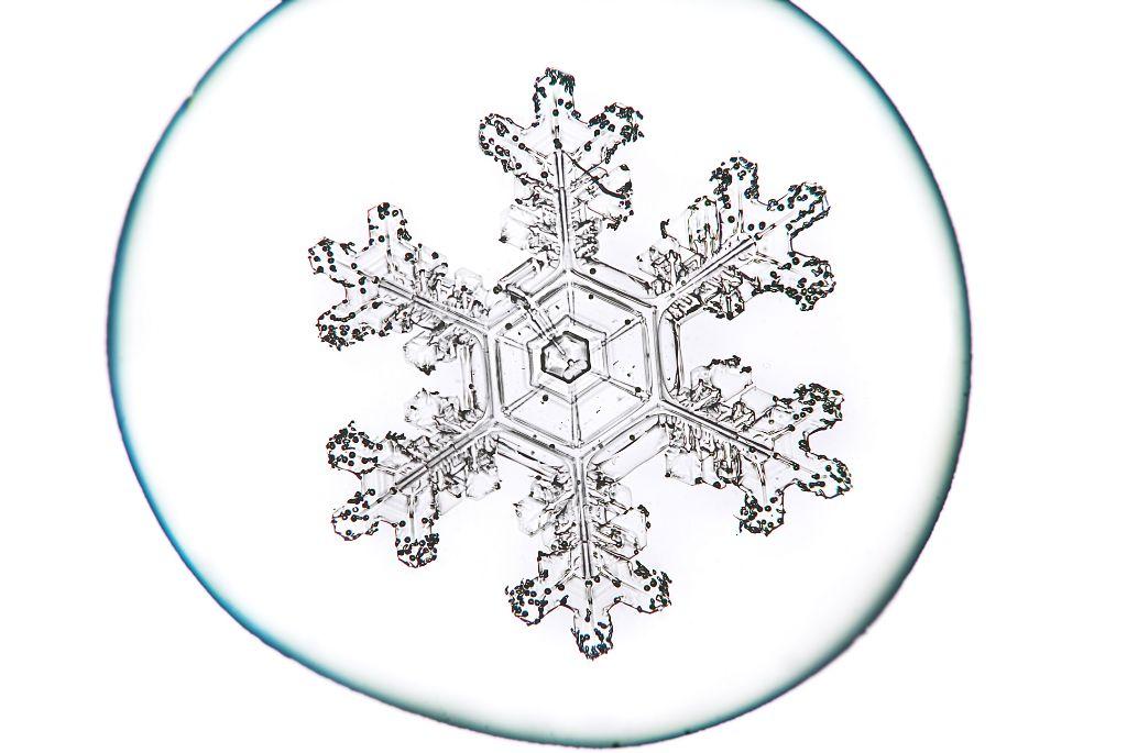 TRT_Snowflake2.jpg