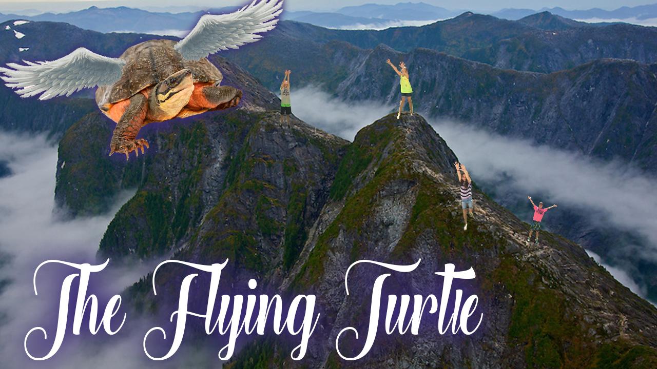The Flying Turtle.jpg