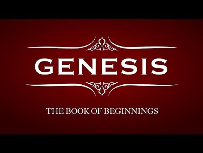 Genesis-overview.jpg