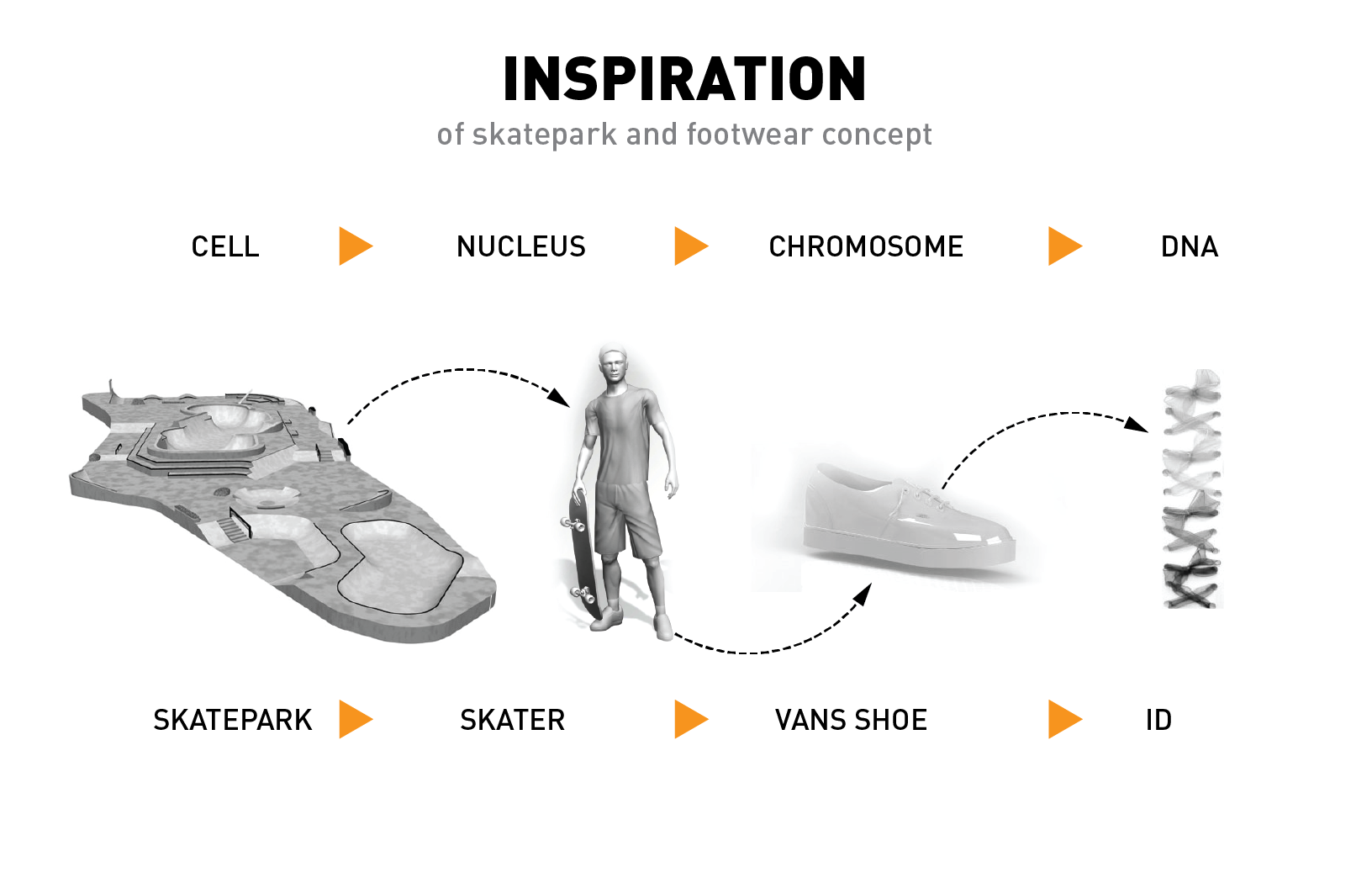 inspiration of the skatepark and shoe-03.png