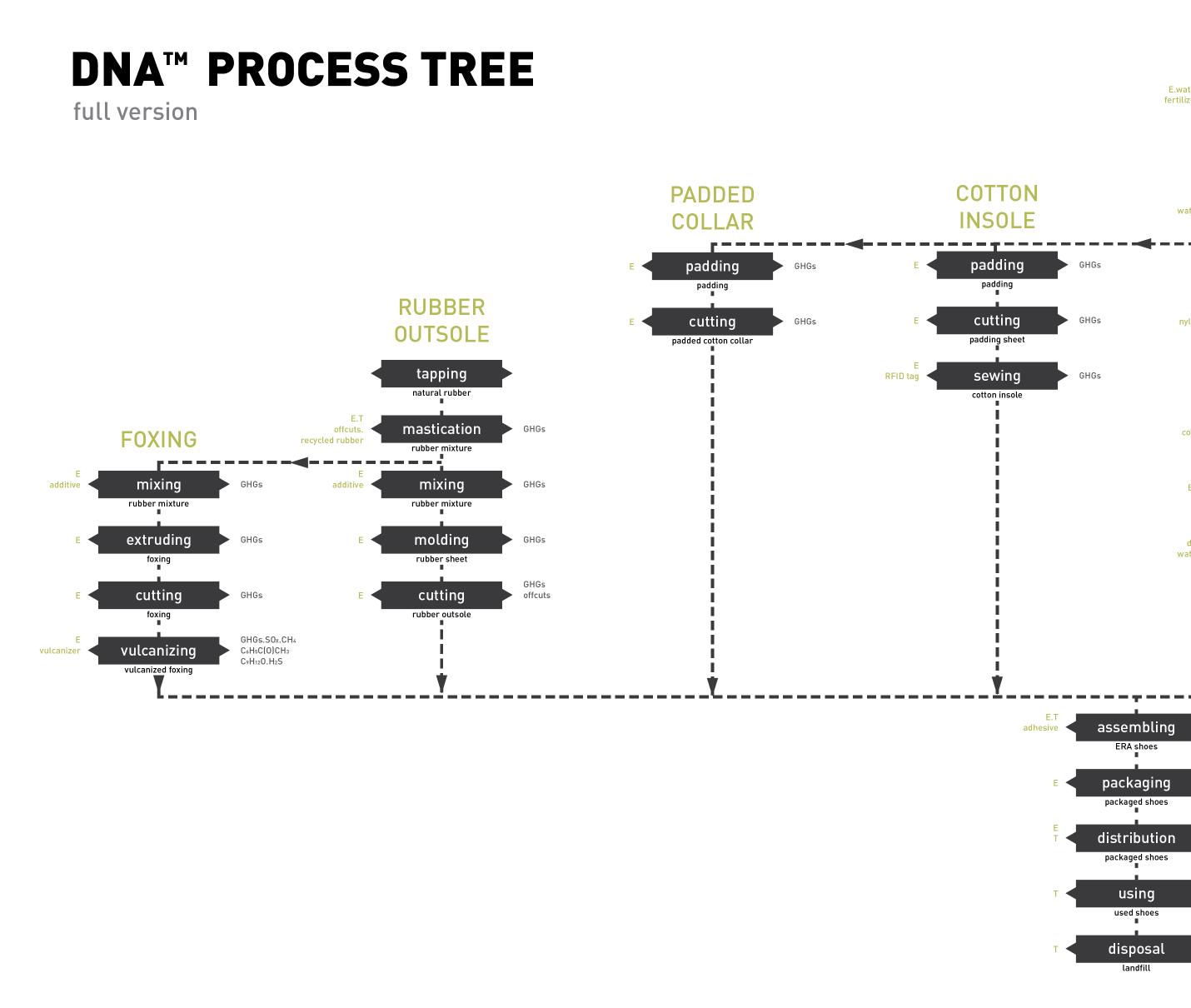 dna process-01.png