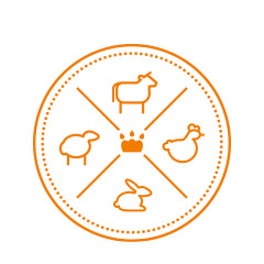 Логотип и фирменный стиль «Лавки Гавки»..