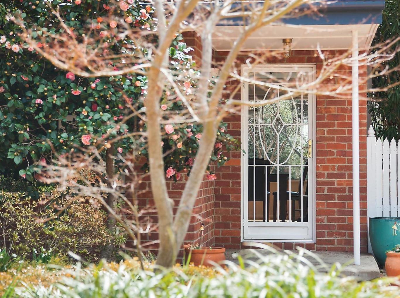 Ainslie Canberra reds brickwork.jpg