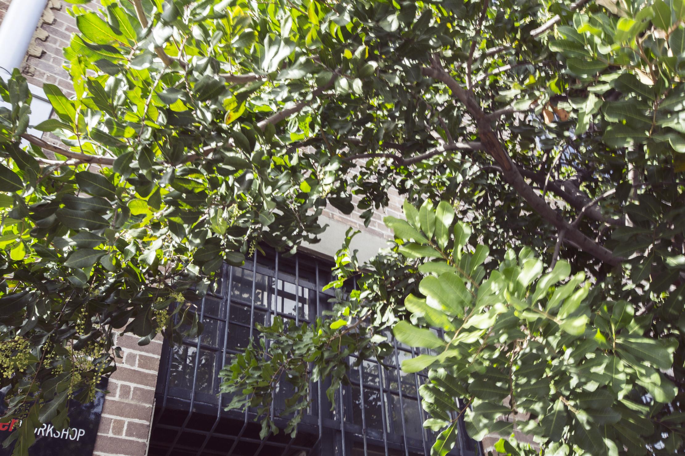 Precinct75_Indoor_0214.jpg
