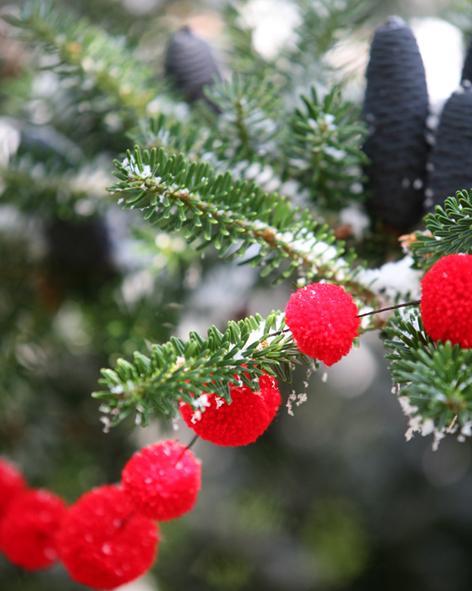 PomPom Galore Red Garland Tree.jpg