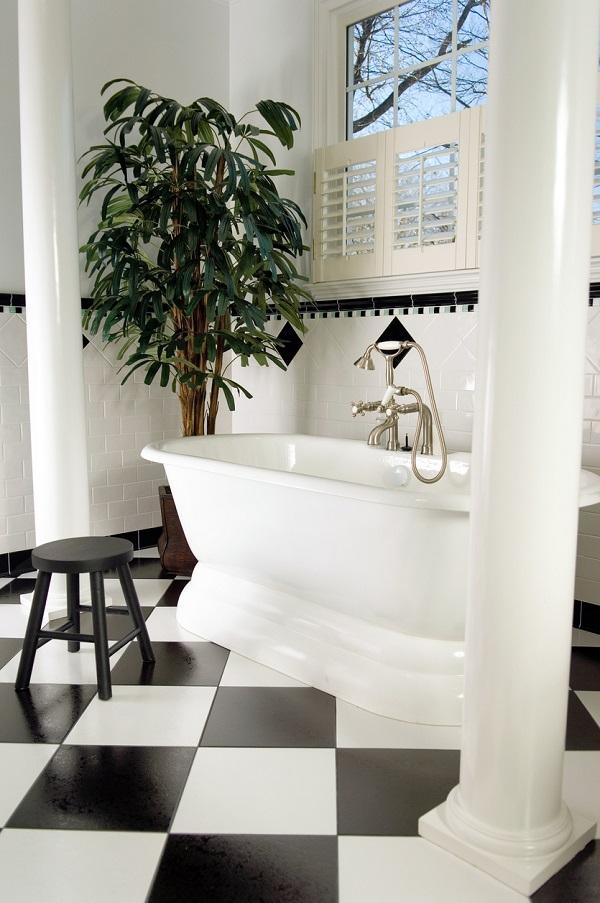 bathroomplants.jpg