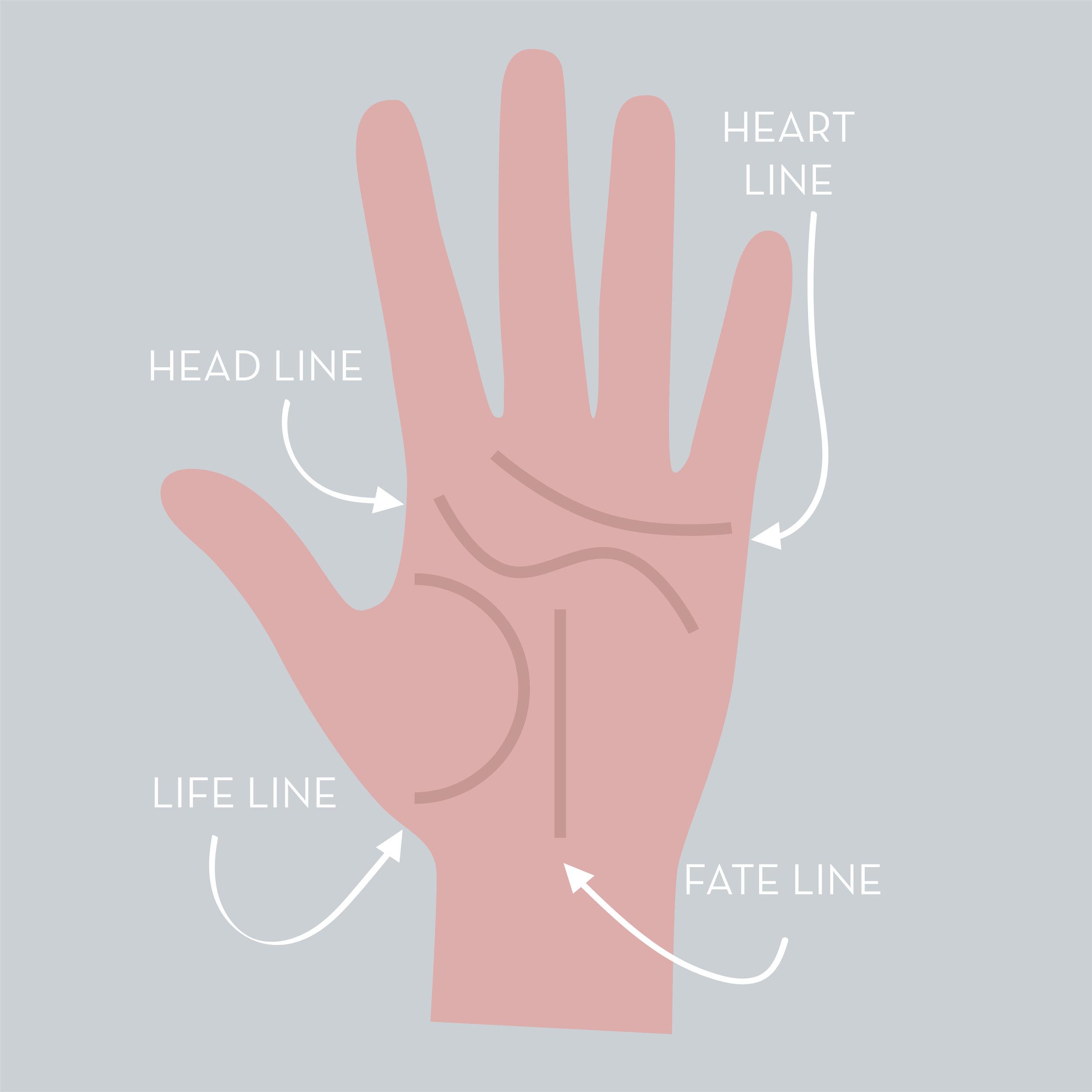 Hand Illustration square.jpg