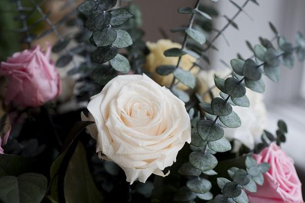 The Magic Flower Co (1).jpg