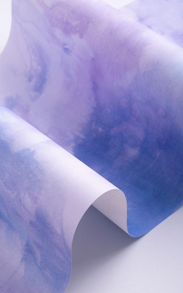 IMG_0110-Web.jpg