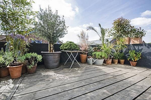 Foxtons Roof Terrace 3.jpg