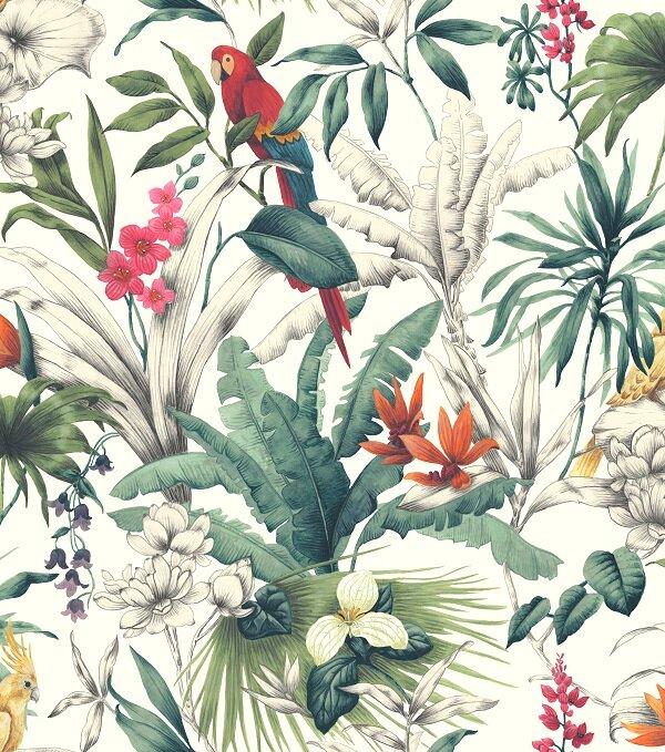 Accessorize Birds of Paradise Wallpaper - Multi Cut Out.jpg