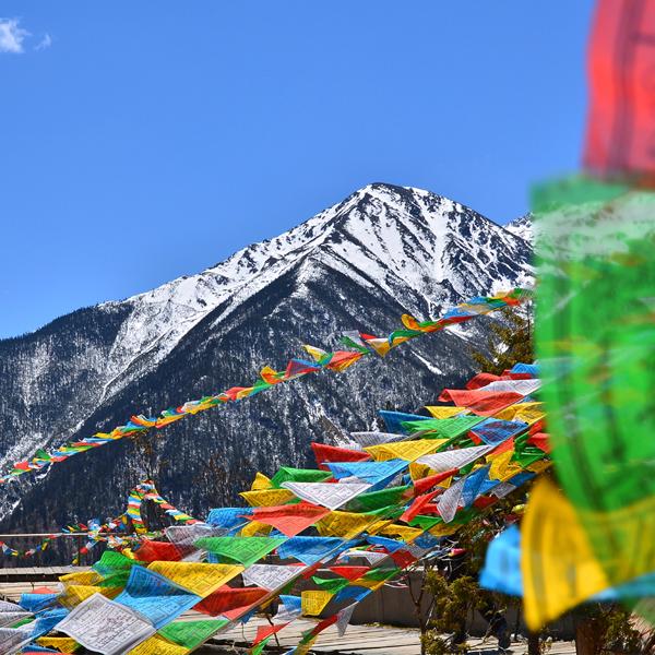 thumb-nepal.png