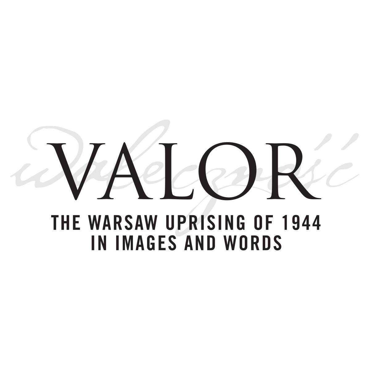 Valor, Warsaw Uprising Exhibition