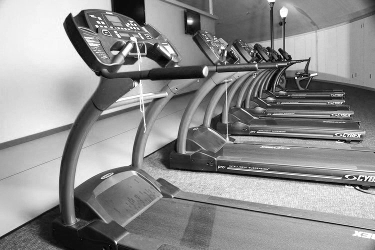 The FitZone -