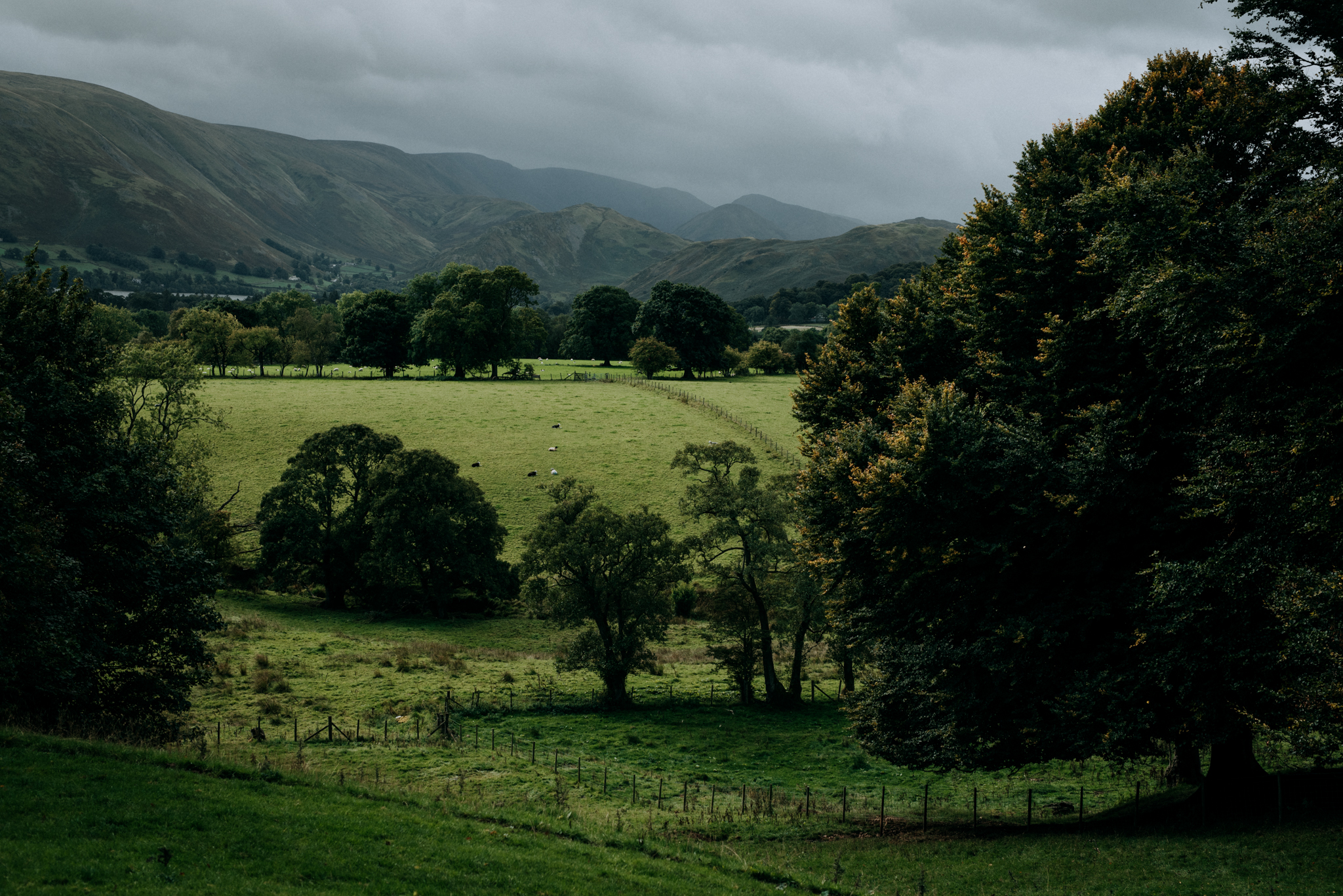 Another Place Lake District Wedding.jpg