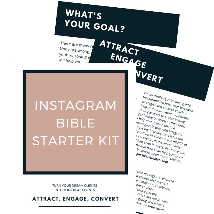 STEP 1 - Get started today amplifying your impact, influence, and income by downloading my FREE Instagram Unleashed Starter Kit