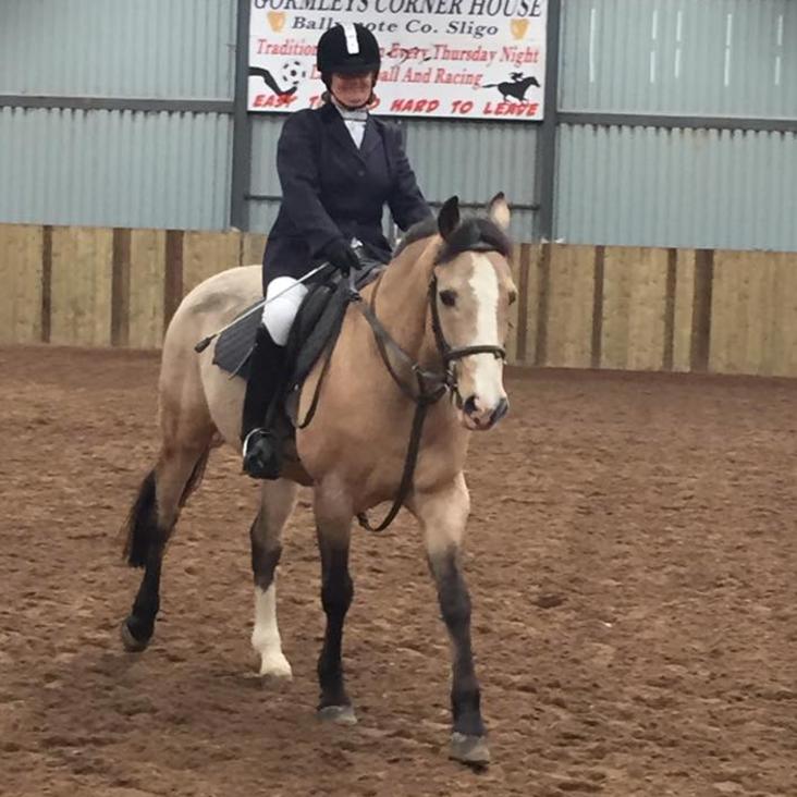 Keash-Equestrian
