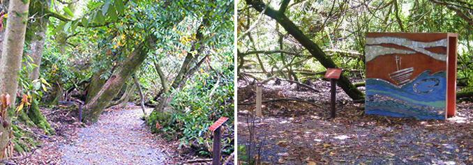 header_woodland.jpg