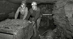 workers arigna.jpeg