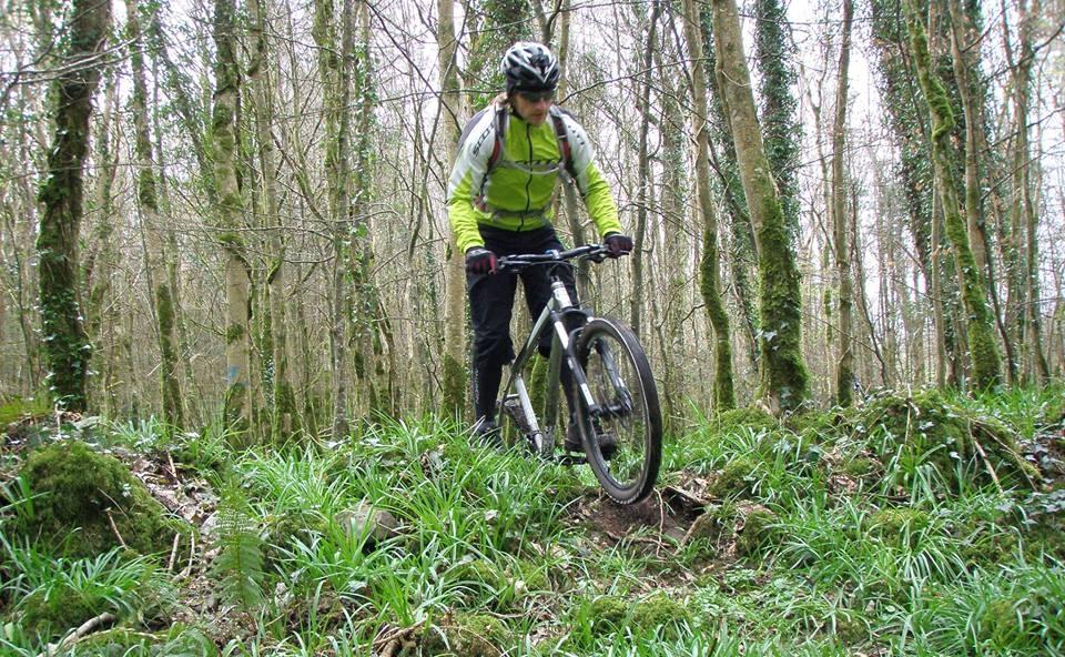 cycle trail 1.jpg