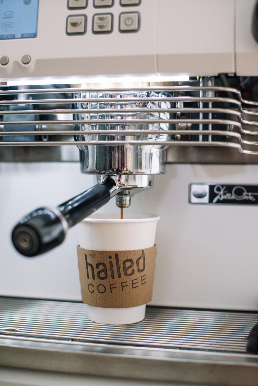 hailed coffee lowres-30.jpg