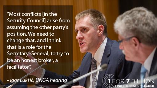 Luksic - Security Council copy.jpg