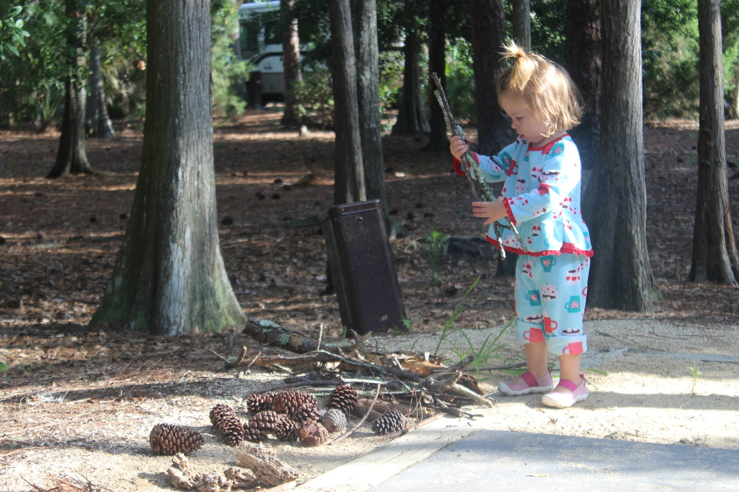 The kids loved gathering pine cones and finding frogs!