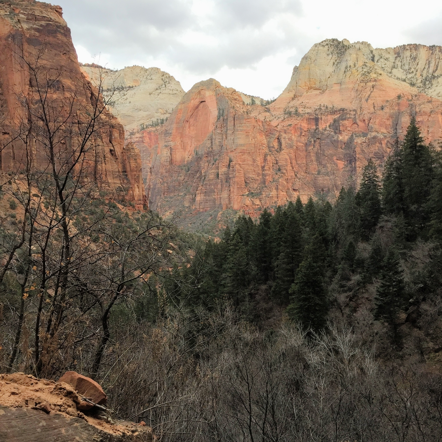 View from Emerald Pools Trail