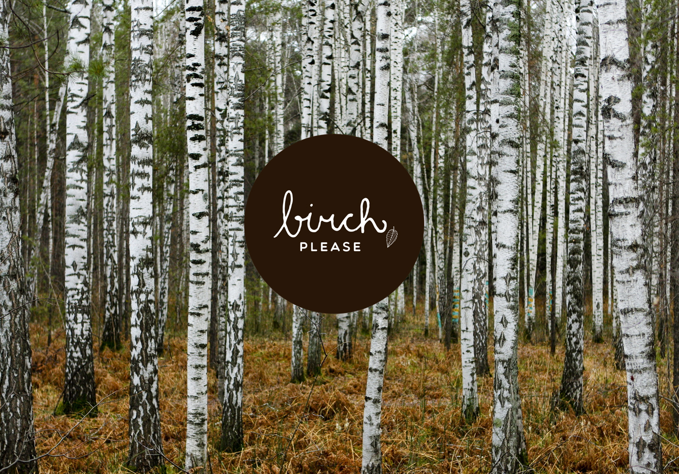 BBDO-Birch-Interns.jpg