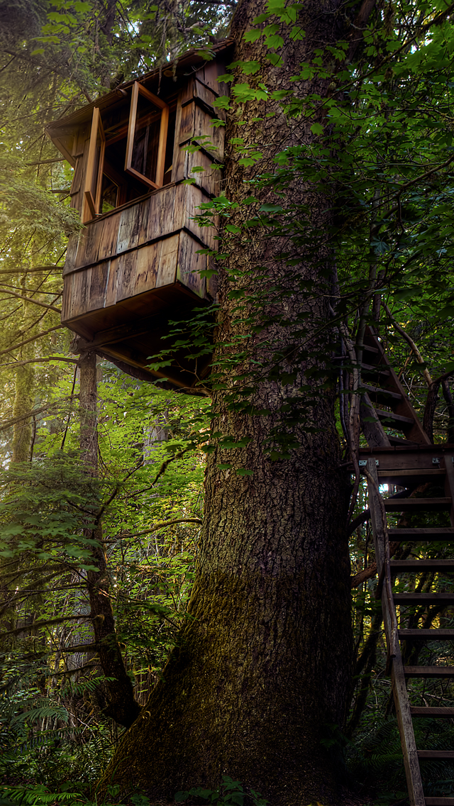 iPhone5s-HTreehouse.jpg