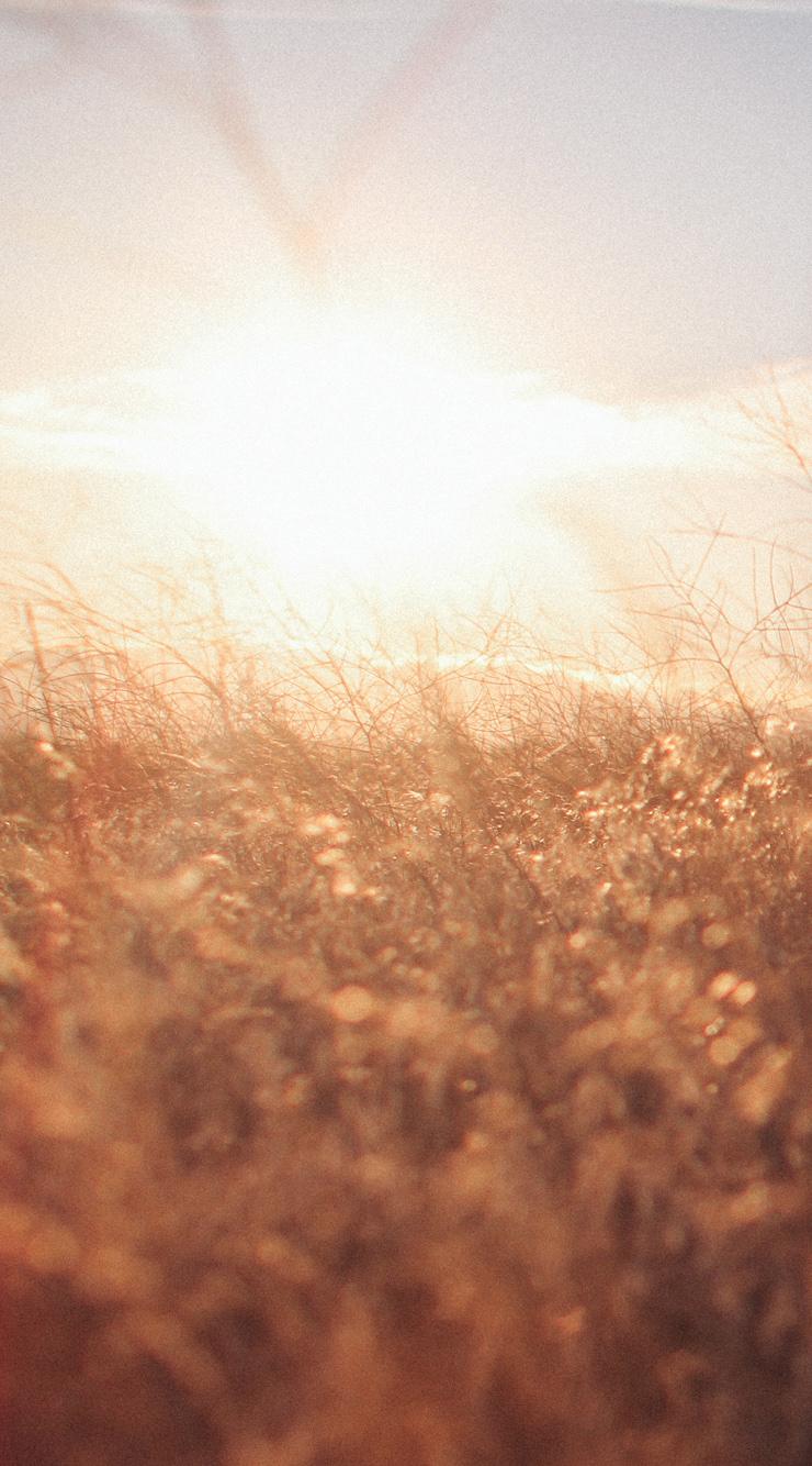 iPhone6-Prairie.jpg