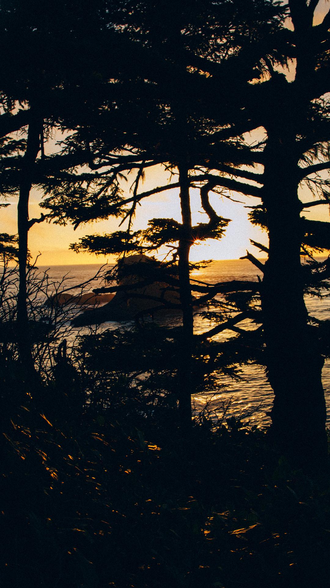 6Plus-Coast.jpg