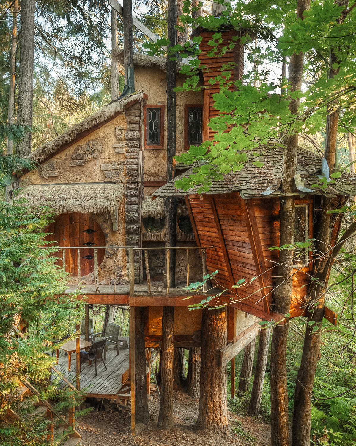 ttt_portrait_treehouse@2x-Edit.jpg