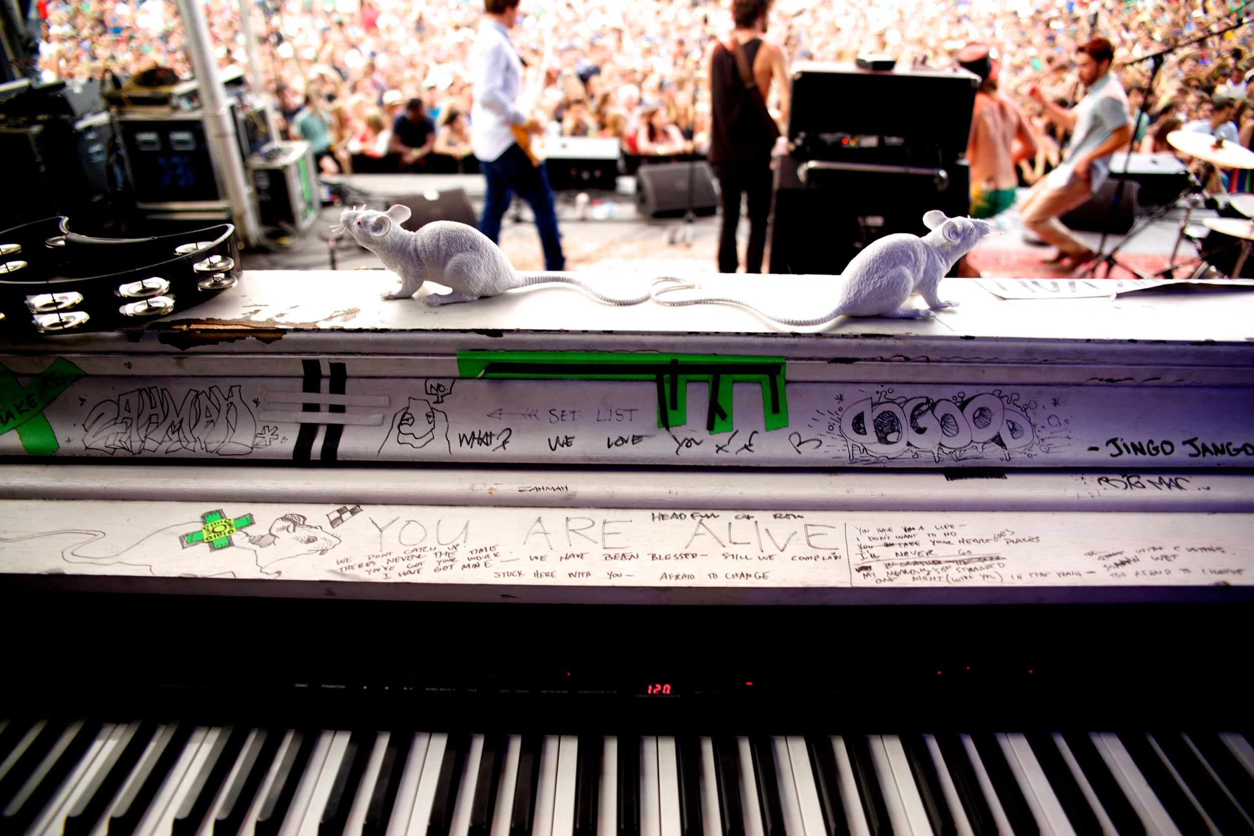 Avett Keyboard.jpg