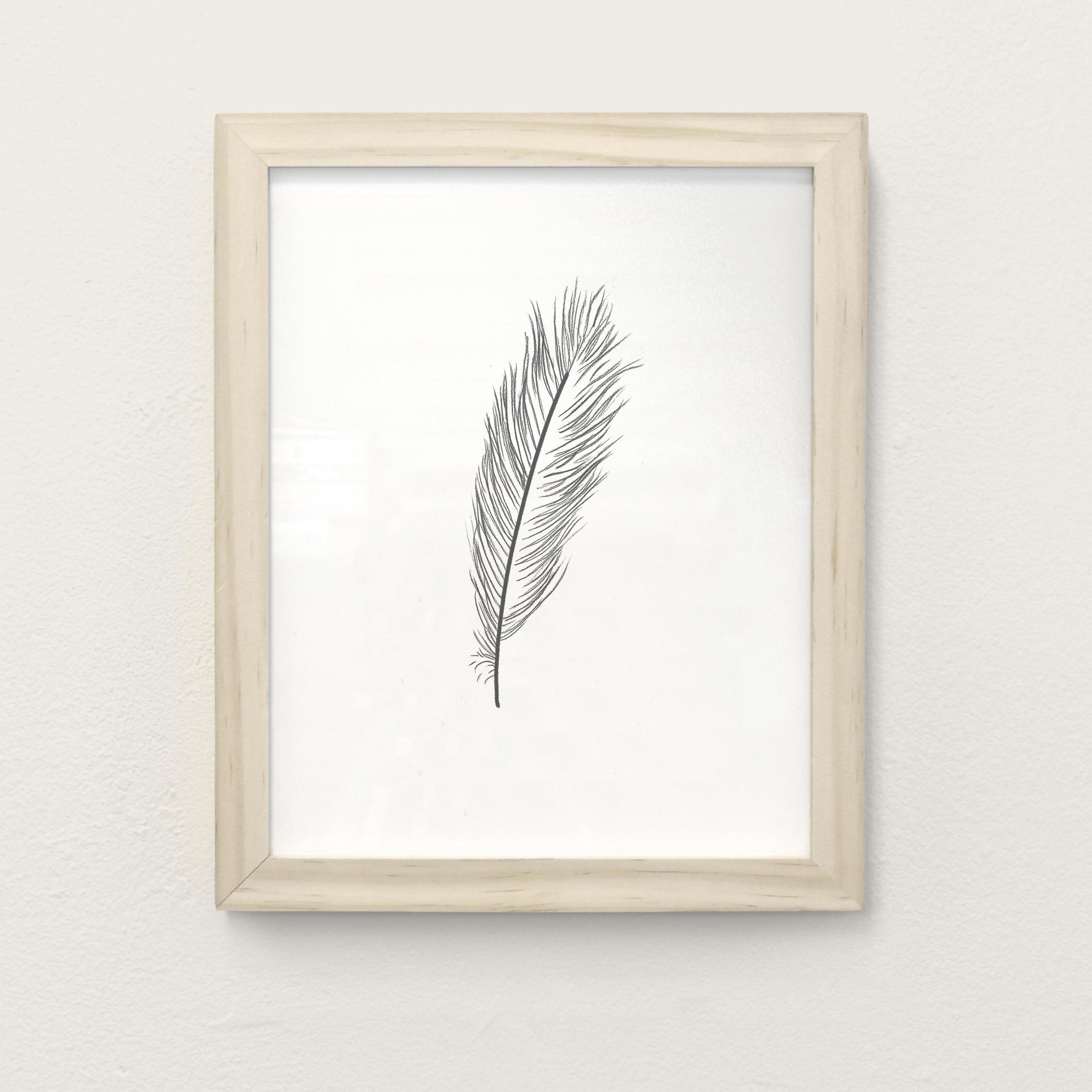 Framed-White_0001_Feather.jpg