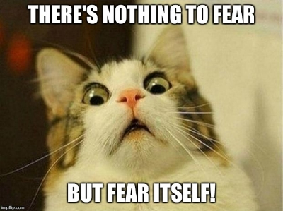 cat nothing to fear.jpg