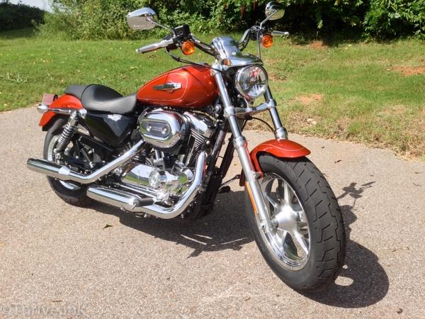 My Harley 1200 Custom