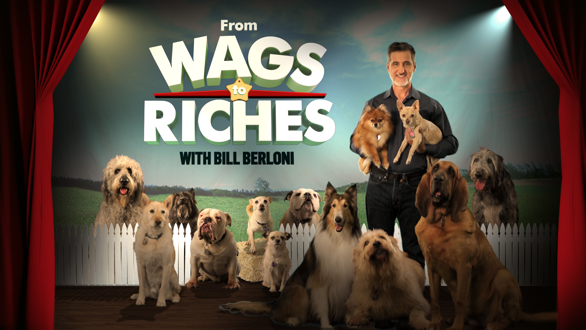 WAGS TO RICHES<strong>Discovery Family</strong><a href=/wags-to-riches>VIEW</a>