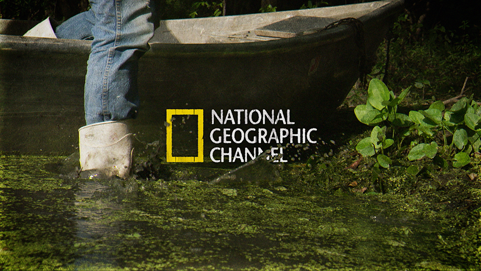 "FILTHY RICHES<strong>NATIONAL GEOGRAPHIC CHANNEL</strong><a href=""/worky"">VIEW</a>"