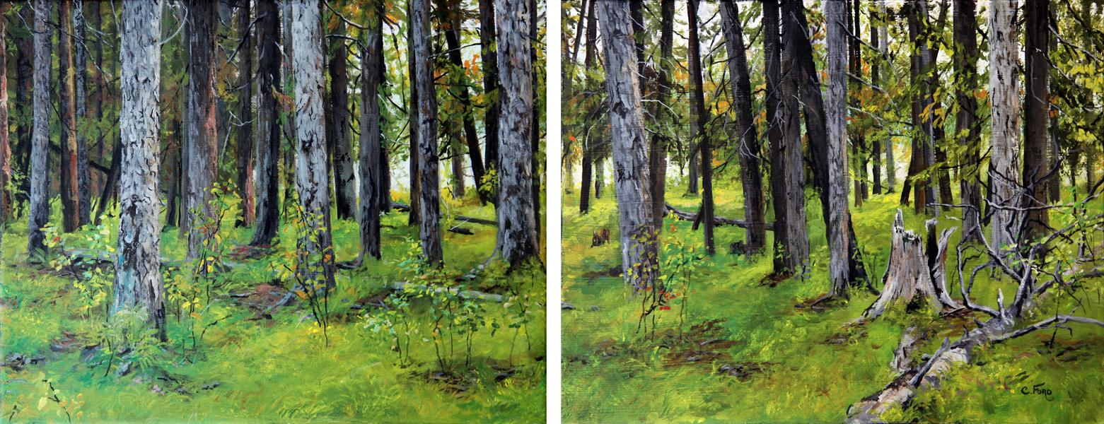 Fenland's Trees