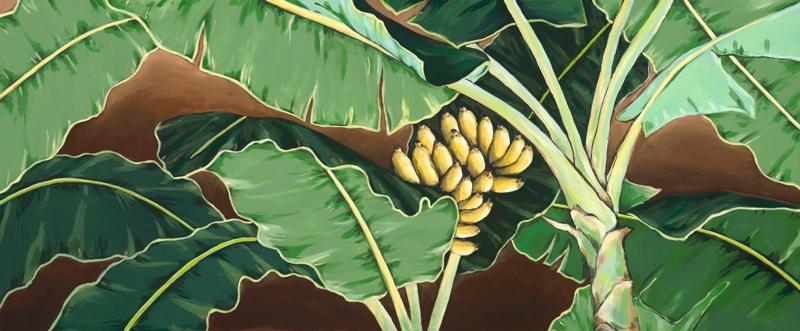 Under A Banana Tree