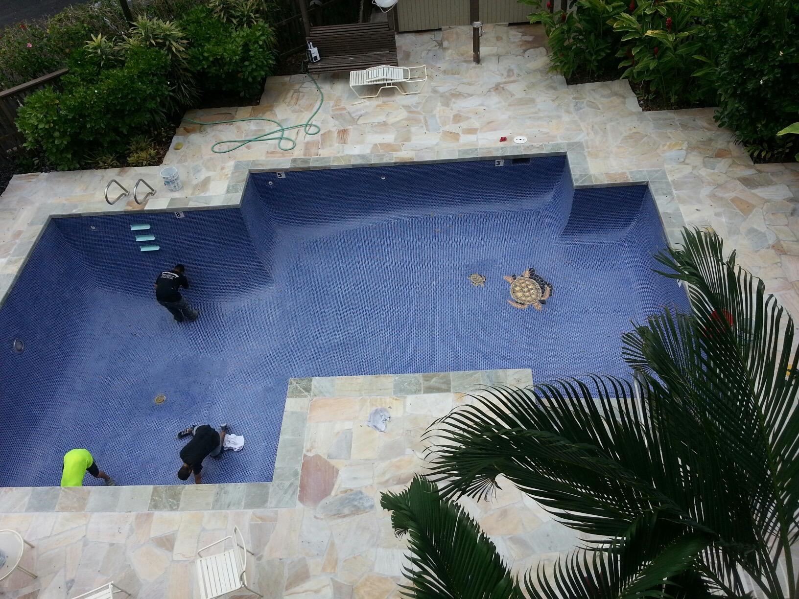 Turtles being Installed