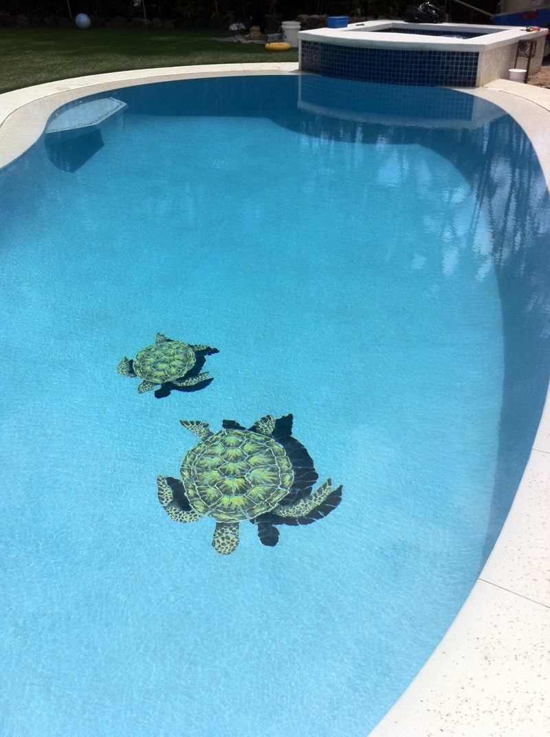 Turtles in Still Water